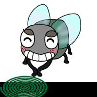 蚊取り線香とハエ